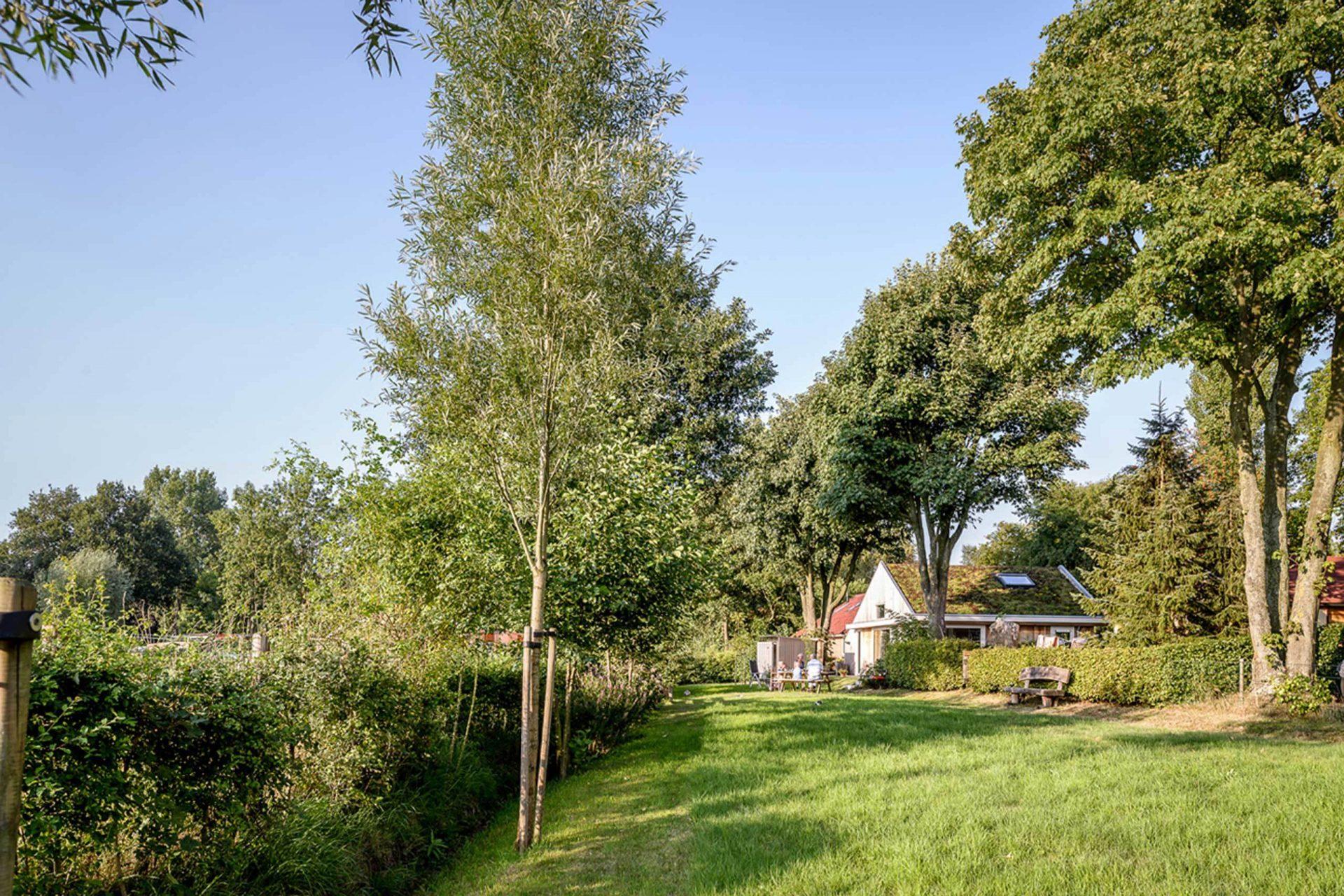 Egelshoek Back Garden
