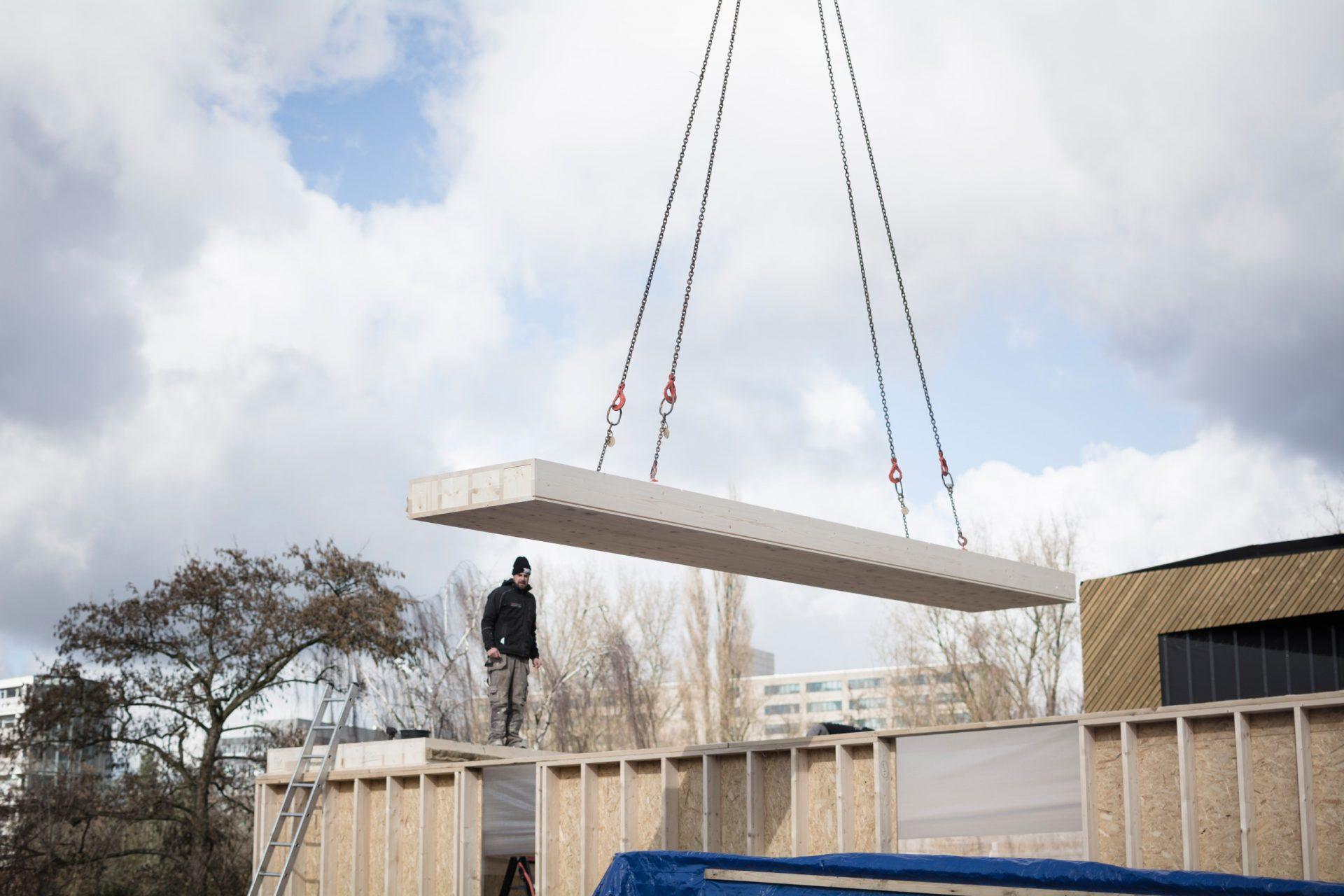 Leonidas Construction Crane