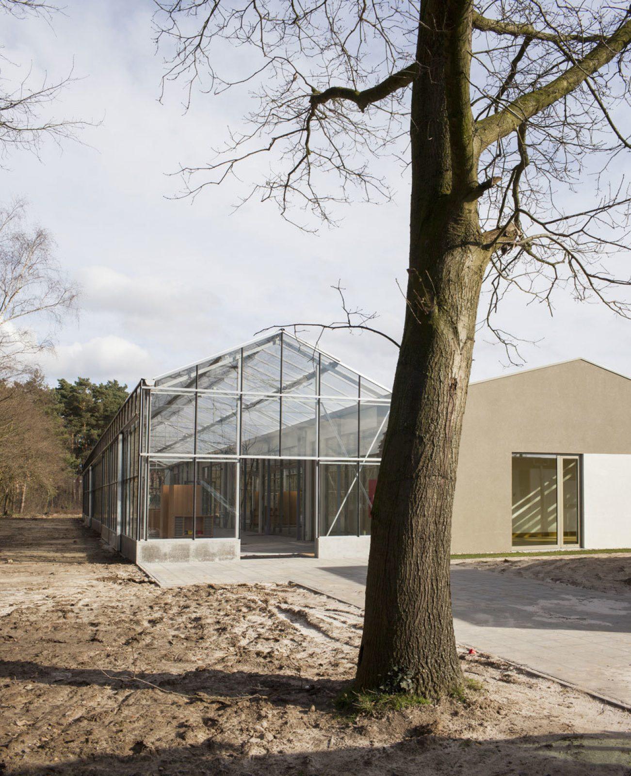Lille Herentals Basisschool Tuin Boom